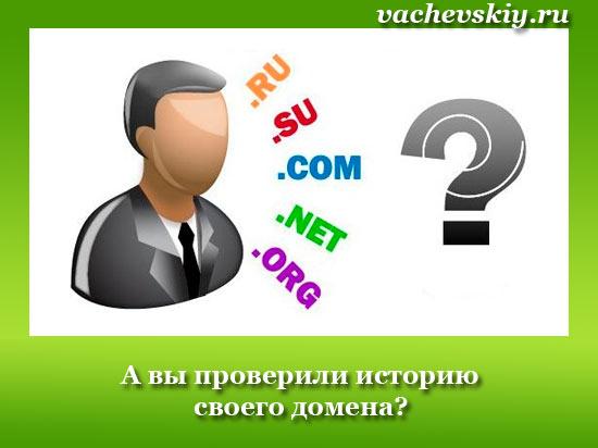 как узнать историю домена