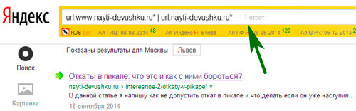 1 страница в Яндексе